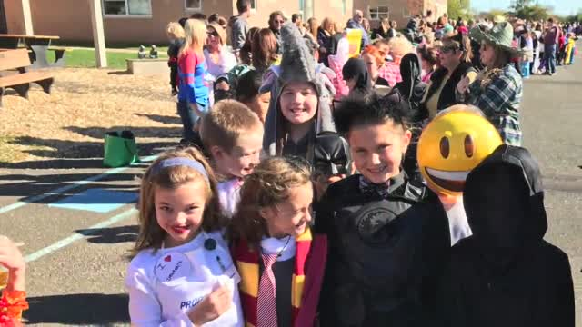 News From The Nest 11/4/16